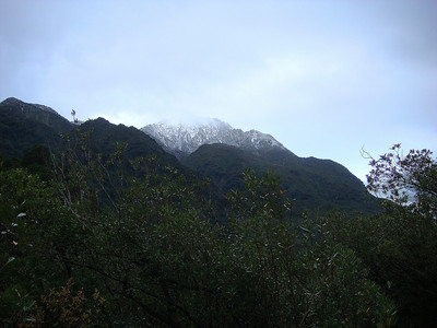 Franz Josef: View from Base of Glacier