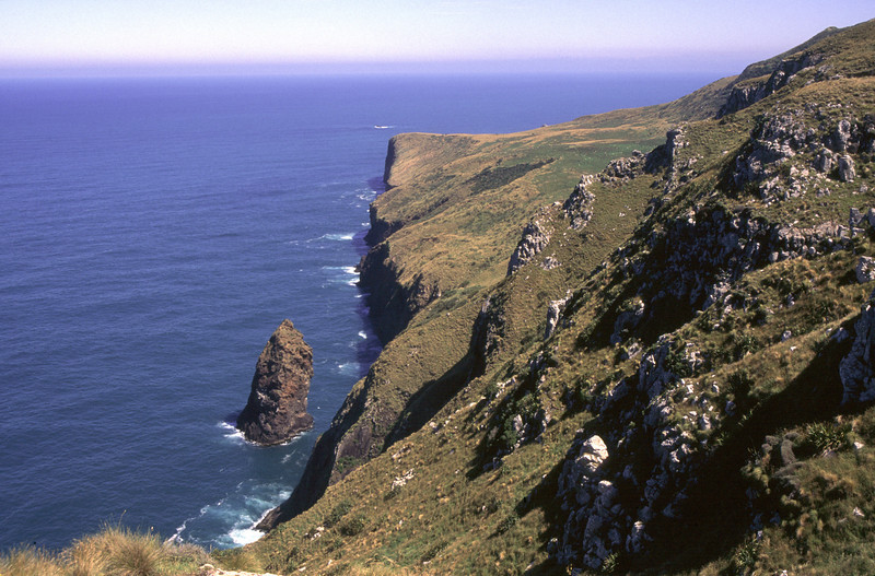 Coastline near Lovers Leap, Otago Peninsula