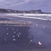 Victory Beach
