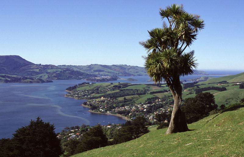 Claremont, Highcliff Road. Otago Peninsula