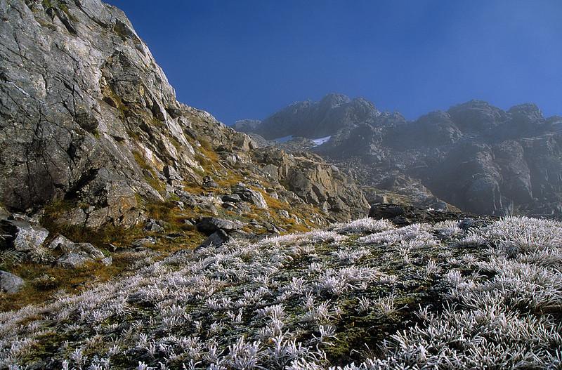 On the east slope of peak 1547m south of Robin Saddle Hut