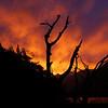 Lake Gunn sunset