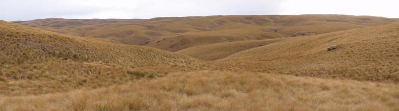 Lammermoor Range