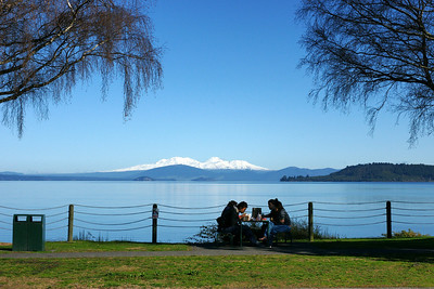 Lake Taupo Lunch