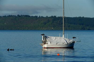 Lake Taupo Pairs