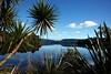 Lake Mapourika 2