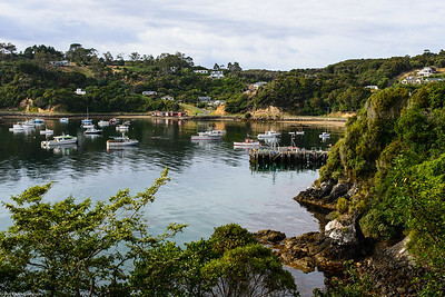 Oban Harbor, Stewart Island, New Zealand