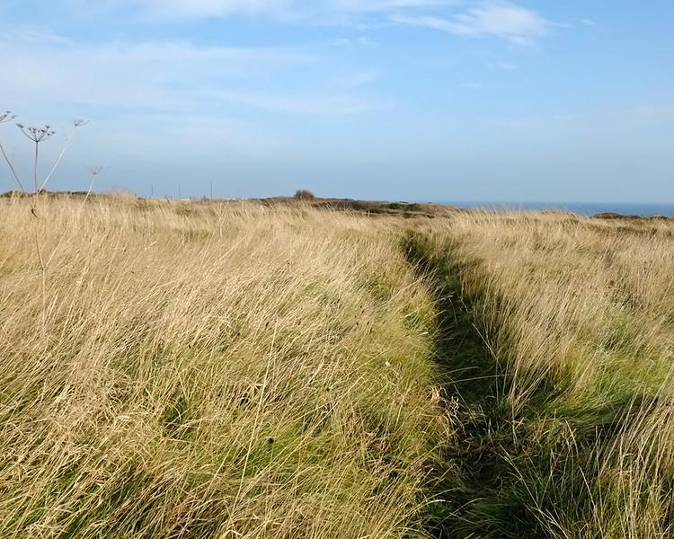 Newbiggen to Sandy Bay
