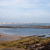 Newbiggen to Sandy Bay Nov 2018