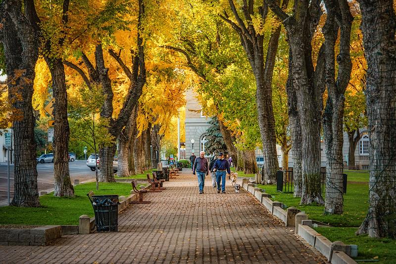 Autumn in Prescott
