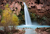 Autumn at Havasu Falls