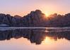 Magenta Sunrise