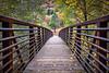Bridge to West Fork