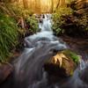 Little Sycamore Falls