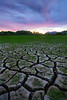 Cracked lakebed