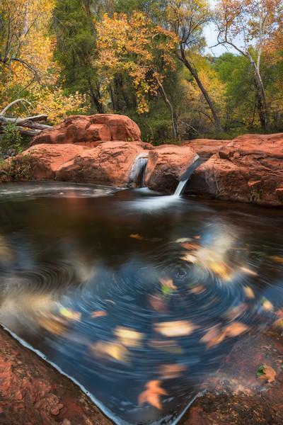 Autumn on Wet Beaver Creek