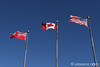 The flags of Niagara