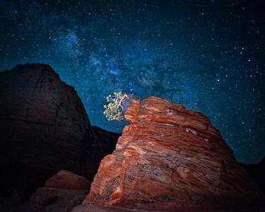 Stars Over Zion Lone Tree