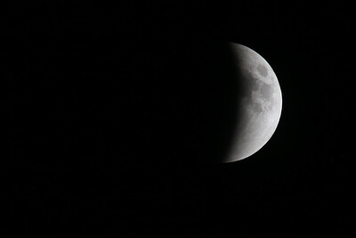 2015 Lunar Eclipse, taken from my backyard on Long Island, NY.