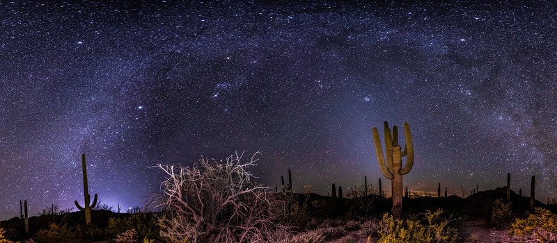 Sonoran Desert Milky Way