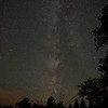Milky way in a Maine forest