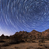Star Trail at Joshua Tree National Park