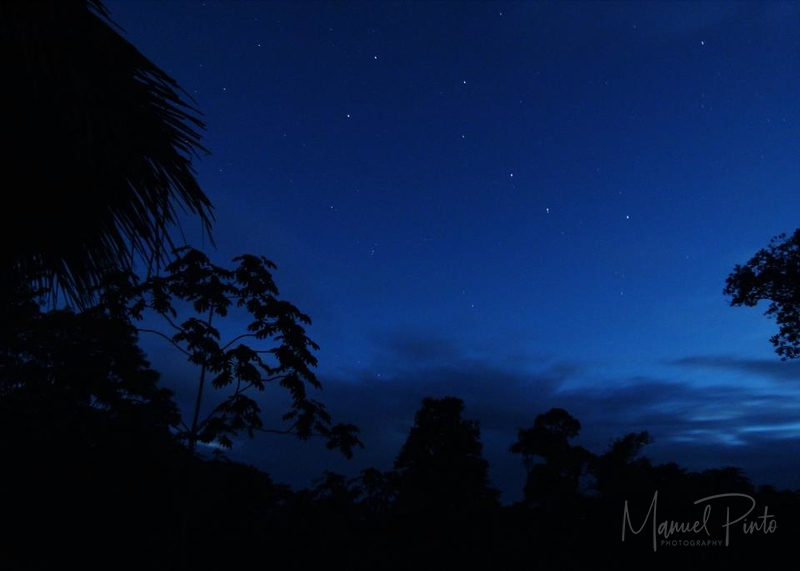The Big Dipper seen from Villa Toucan in the 2011 Summer Sky photo taken by guest Jane West