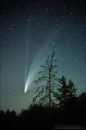 Comet NEOWISE. Verner, Ontario.