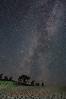 Milky Way over the Dune Climb area of Sleeping Bear National Lakeshore.
