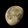 Moon 092016 516am-Tony Porter Photography-086