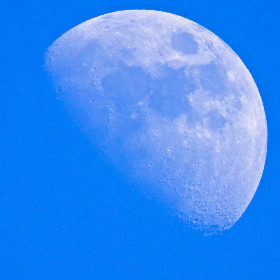 Afternoon Moon