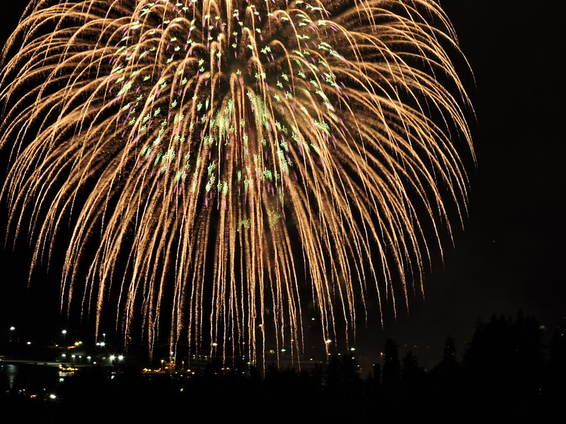Fireworks Independence Day