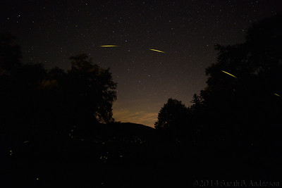 Firefly photobombs the Big Dipper