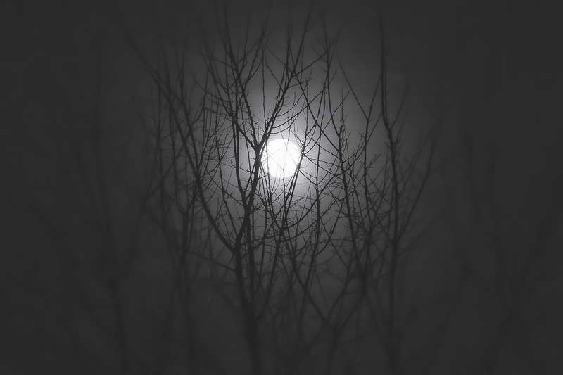 The Cold Moon 2017
