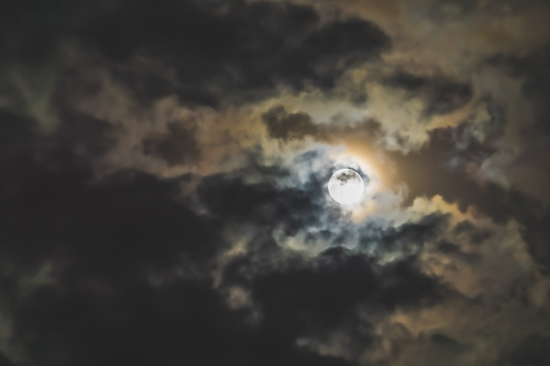 The Flower Moon 2019