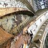 125th Street Subway Viaduct III
