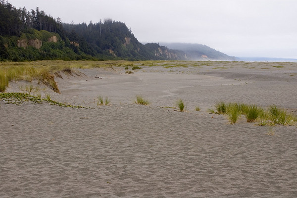 The beach near Fern Canyon. We ate lunch not far from here.