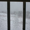 Nor'easter: To NE through living room windows