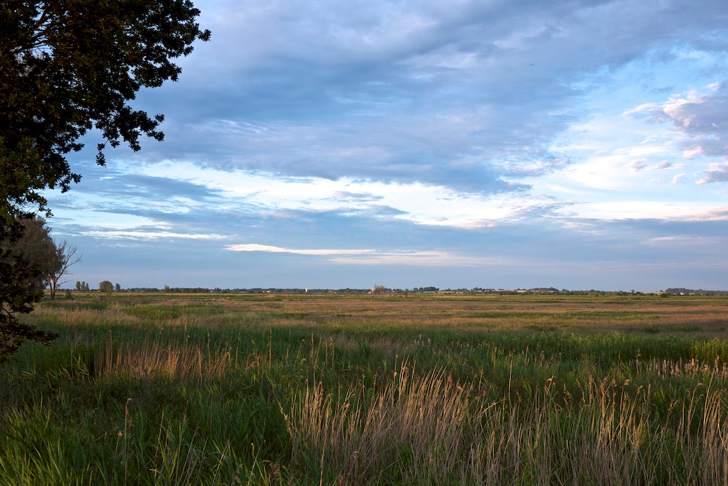 Sunset on S. Walsham Marshes and Thurne