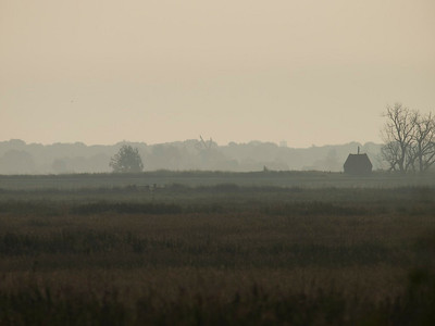 Sunrise on S. Walsham Marshes and Thurne