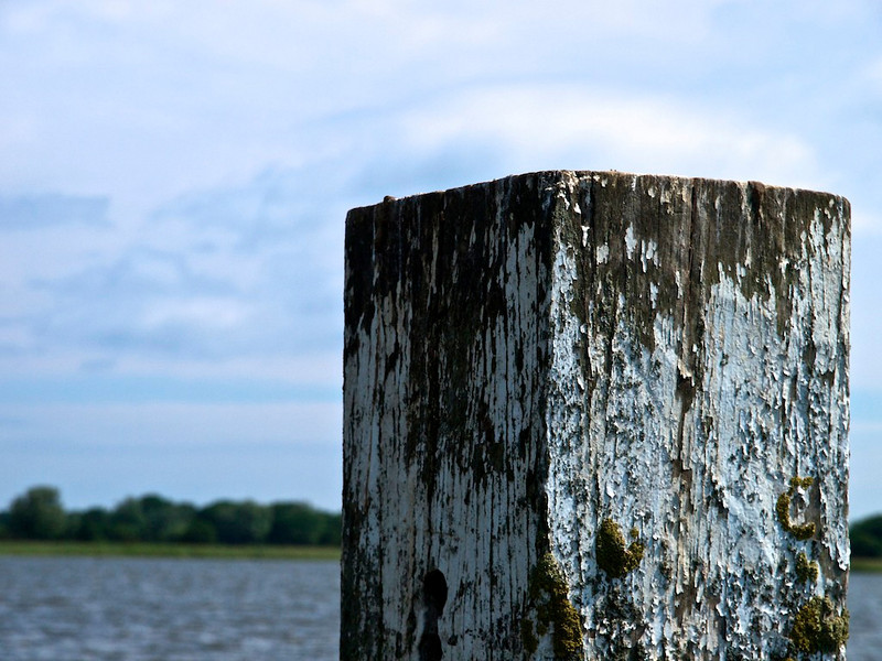 Starboard Post on Hickling Broad