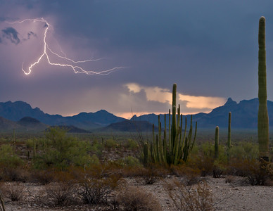 Sonoran Desert Lightning