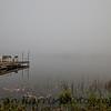 Foggy Morning - Rice Lake, (Northern) Ontario