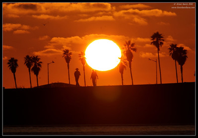 Sunset at Dog Beach, Robb Field, San Diego County, California, July 2011