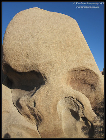 Skull rock at Joshua Tree National Park, Riverside County, California, May 2013