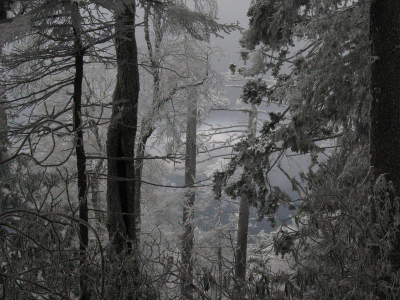 Mt Sterling descent after a snowstorm, Nov 2008<br /> Nov 2008