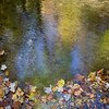 Black Mtn stream at Bear Track Rd, NC<br /> Oct 2008