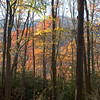 Descent from Scaly Bald, NC<br /> Nov 2008
