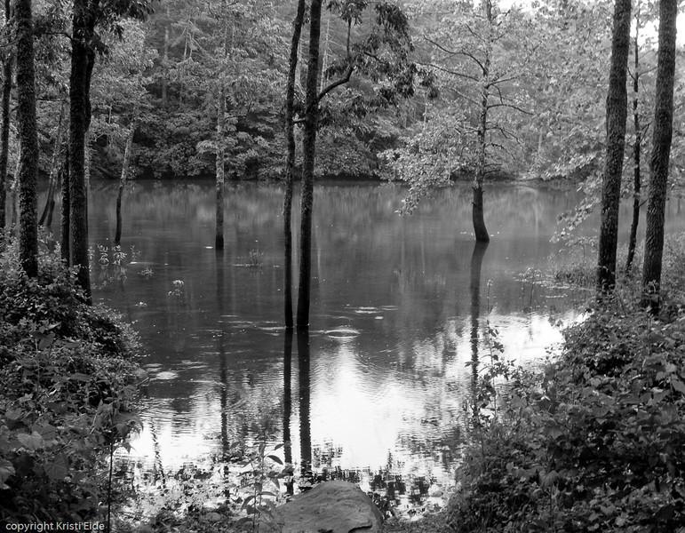 Taken May 30, 2010 at Lost Cove, Smoky Mountains, North Carolina