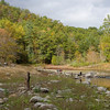 Lost Cove, Smoky Mtns<br /> Oct 2008